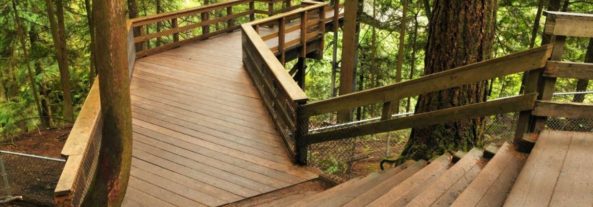 construction extérieure en bois douglas