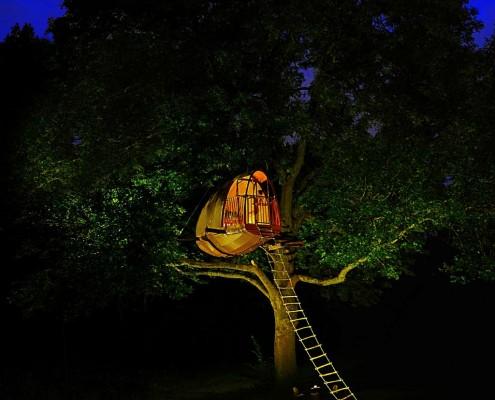 cabane-bois-arbres-cocoobane-par-ecobane