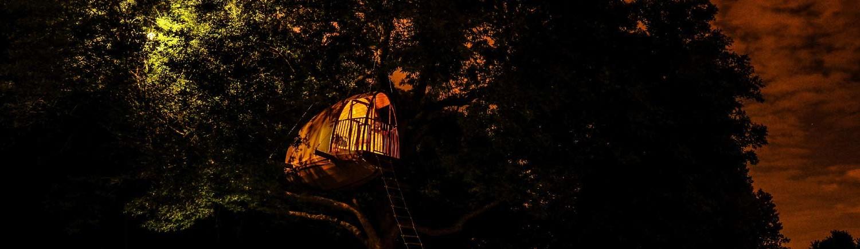 cocoobane-cabanes-bois-arbre-ecobane