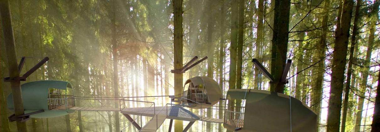 Montage 3D de cocoobanes dans les arbres