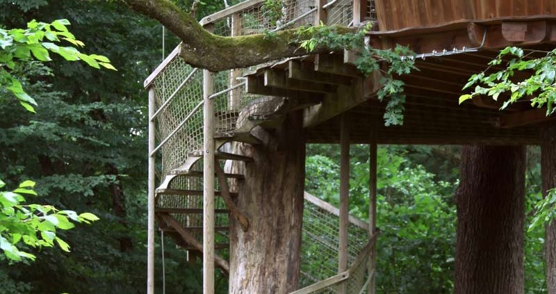 escalier-bois-tronc-ecobane