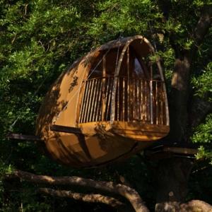 Cocoobane, modèle de cabane dans les arbres