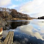 vue sur un lac depuis une cabane sur l'eau