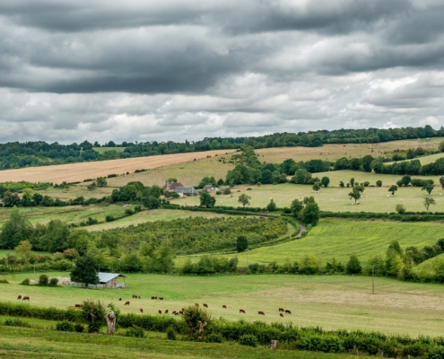 Paysage de Normandie
