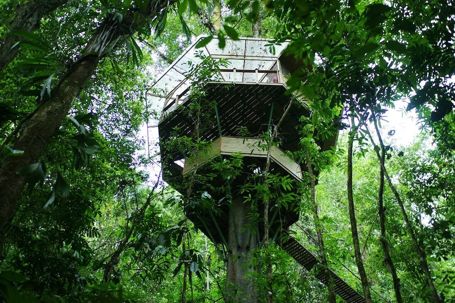 Cabane perchée dans un arbre au Costa Rica