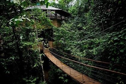 Pont suspendu et cabane dans les arbres au Costa Rica