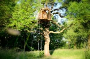Cabane dans arbre possibilité fondation pilotis